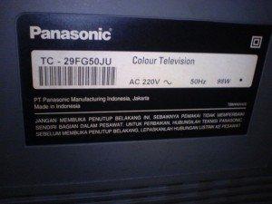 Televisi Panasonic TC29FG50JU